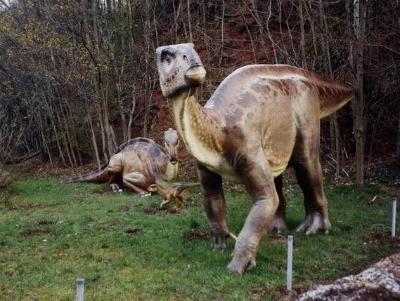 Палеонтологи впервый раз отыскали окаменелый мозг динозавра